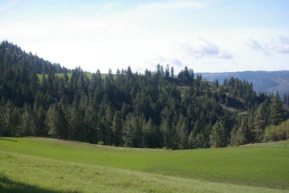 Idaho-Ranch-IMGP5206