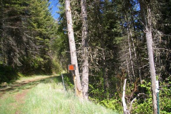 Idaho-Ranch-IMGP5237
