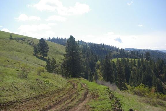 Idaho-Ranch-IMGP5244