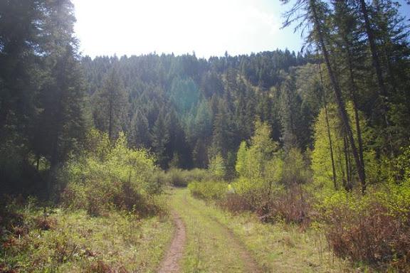Idaho-Ranch-IMGP5257