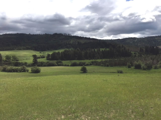 North Idaho Acres for Sale