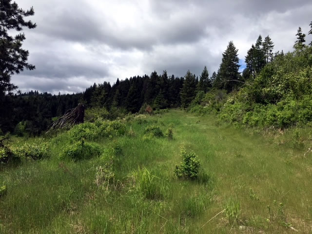 93 North Idaho Acres for Sale